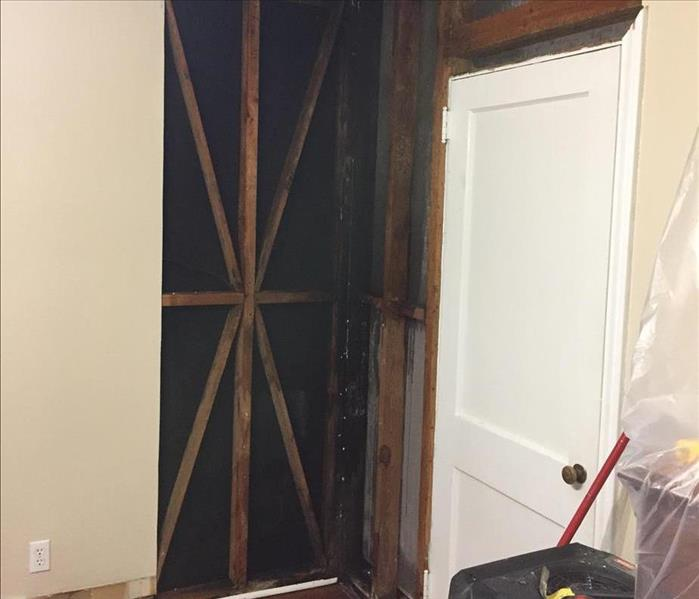 Materials removed from wall due to mold