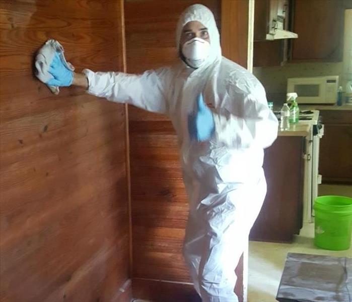 Mold Remediation How to know when you need a mold remediation company