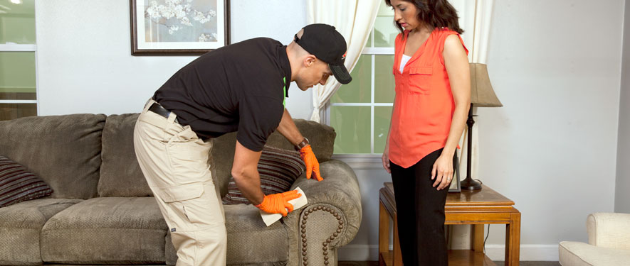 Hattiesburg, MS carpet upholstery cleaning