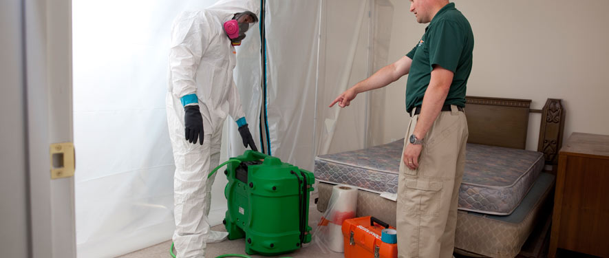 Hattiesburg, MS mold removal process